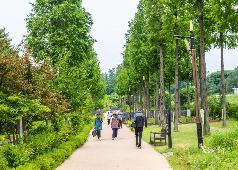 A view from the moving path of the Pureun Arboretum