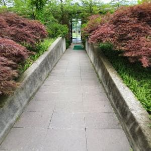 A view of the entrance of the wheelchair user-only access to the Pureun Arboretum from the main gate